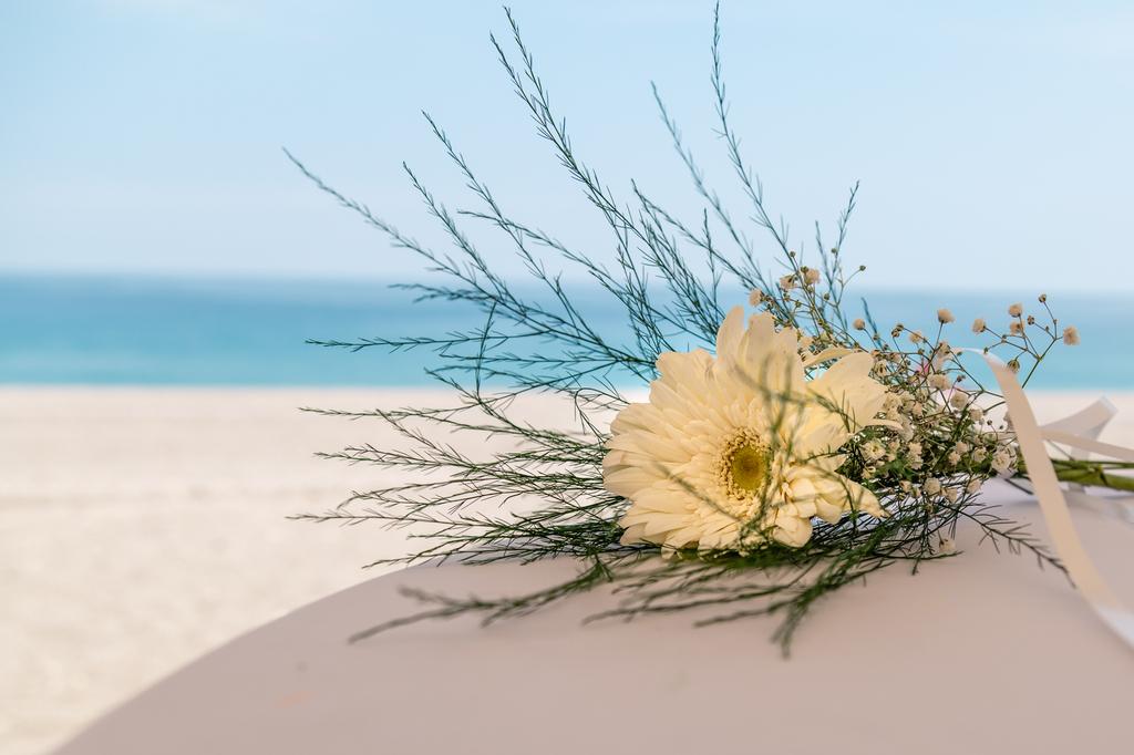 Flor sobre una mesa blanca con el mar al fondo.